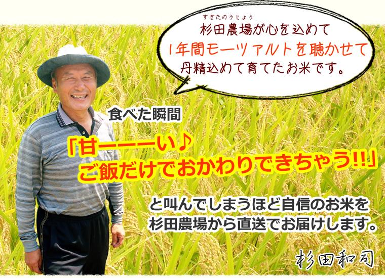 杉田農場が1年間モーツァルトを聴かせて育てたコシヒカリ